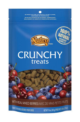 Nutro Crunchy Medium Adult Dog Treats Mixed Berry 10 oz. 1