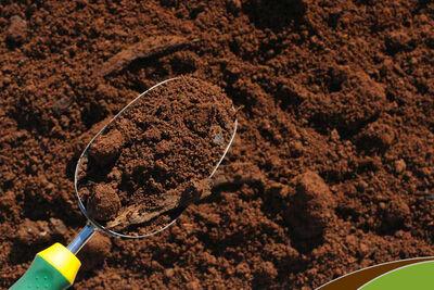 Ace Top Soil 40 lb.