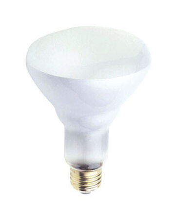 Westinghouse 65 watts 650 lumens 2700 K Medium Base (E26) Floodlight Incandescent Light Bulb BR3