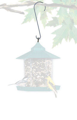 Perky-Pet Bird Feeder Hook Metal 12 lb.