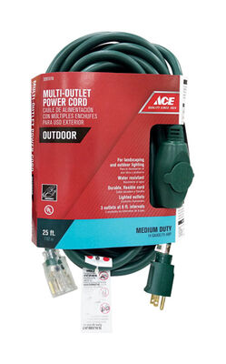 Ace Indoor and Outdoor Extension Cord 14/3 STW 25 ft. L Green