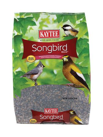 Kaytee Songbird Wild Bird Food Black Oil Sunflower Seed 14 lb.