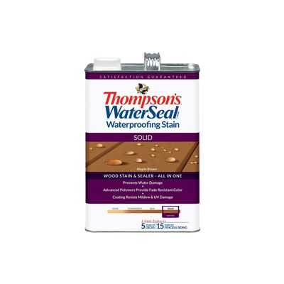 Thompson's WaterSeal Solid Maple Brown Waterproofing Wood Stain and Sealer 1 gal.