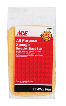 Ace Sponge 7 in. L